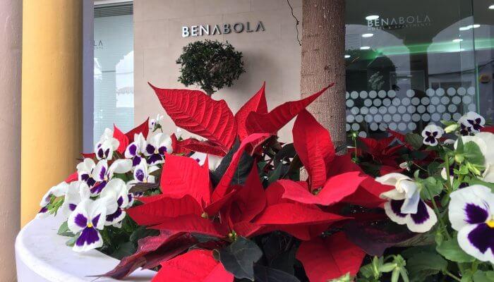 Noël à Puerto Banús