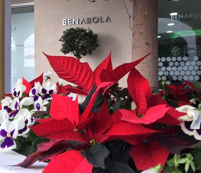 Navidad en Puerto Banús