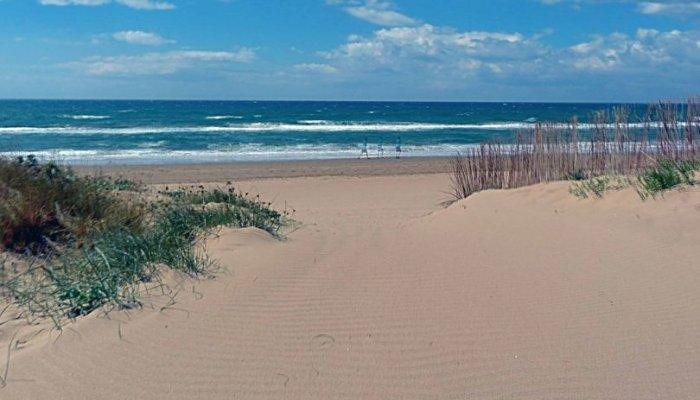 Playa el Alicate Puerto Banús