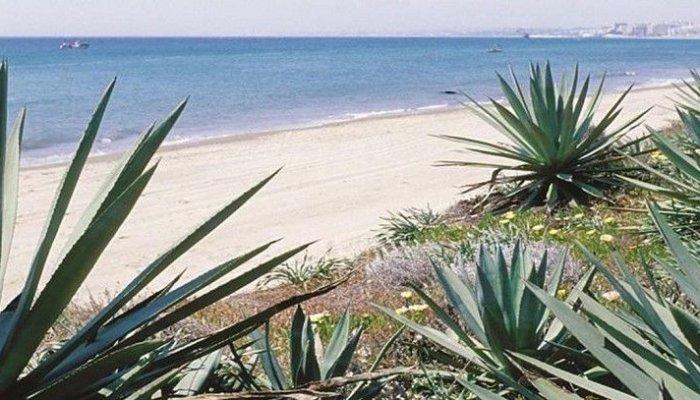 Playa río Real Marbella
