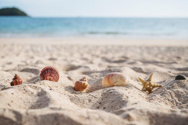 Playa Puerto Banus